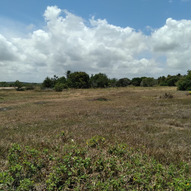 Terreno a venda em Lucena medindo 14,0 x 20,0 metros - Foto 5