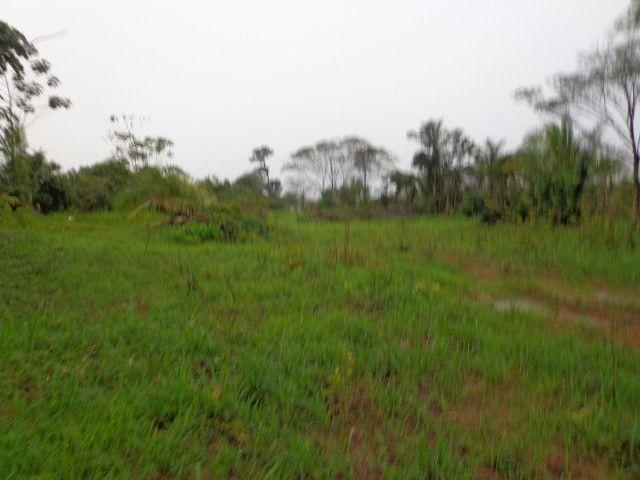Fazenda 100hectares - Foto 13