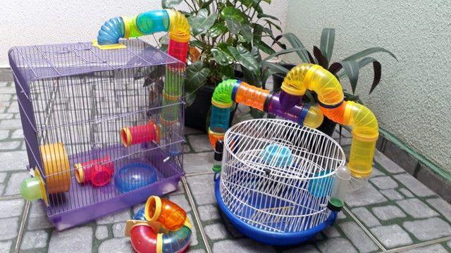 Gaiolas para Hamter!  - Foto 6