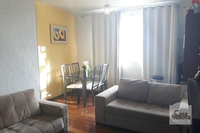 Apartamento à venda com 3 dormitórios em Salgado filho, Belo horizonte cod:249666 - Foto 4