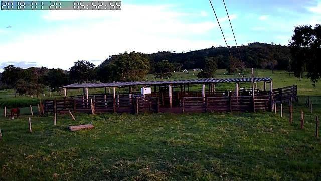 Fazenda em Guiratinga 680Hectares - Foto 8