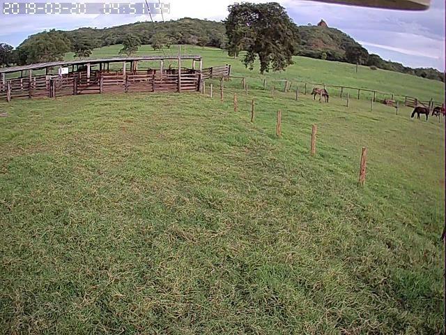 Fazenda em Guiratinga 680Hectares - Foto 12