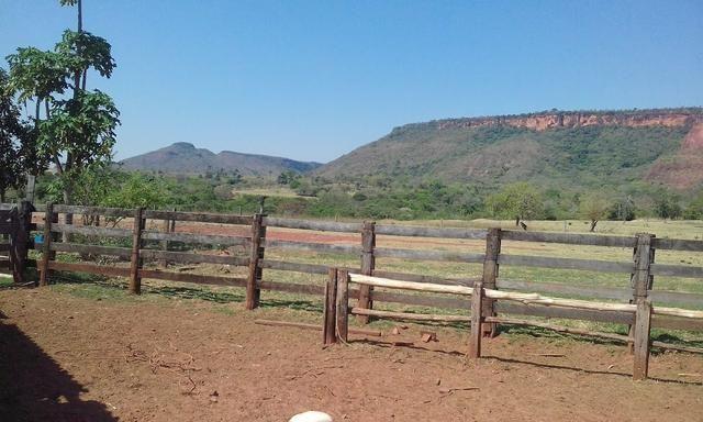 Fazenda 612 hectares em Pedra Preta - Foto 2