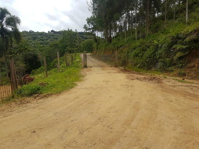 Chacrinha - Foto 9