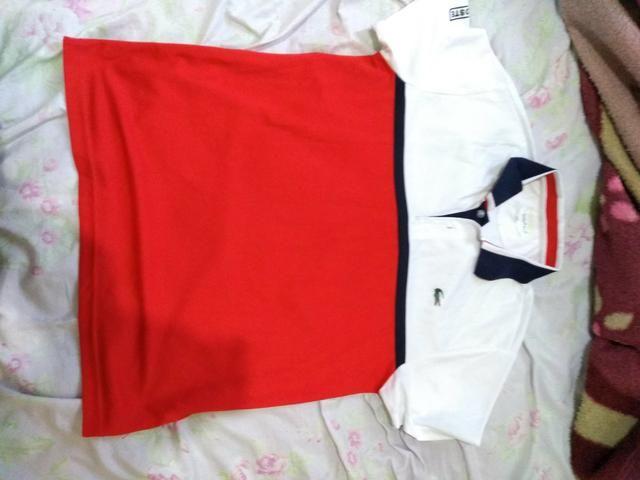 823a2f76ff670 Camisa original da lacoste M - Roupas e calçados - Jardim Santa ...