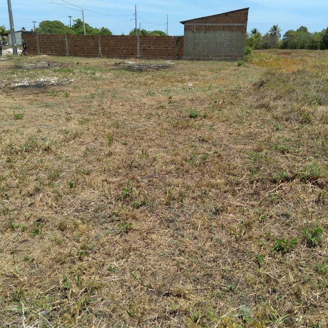 Terreno a venda em Lucena medindo 14,0 x 20,0 metros