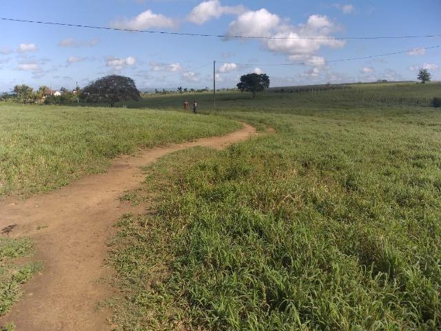 Propriedade de 8 hectares-toda cercada-com 2 casas, a 5 km de Apoti-PE - Foto 16