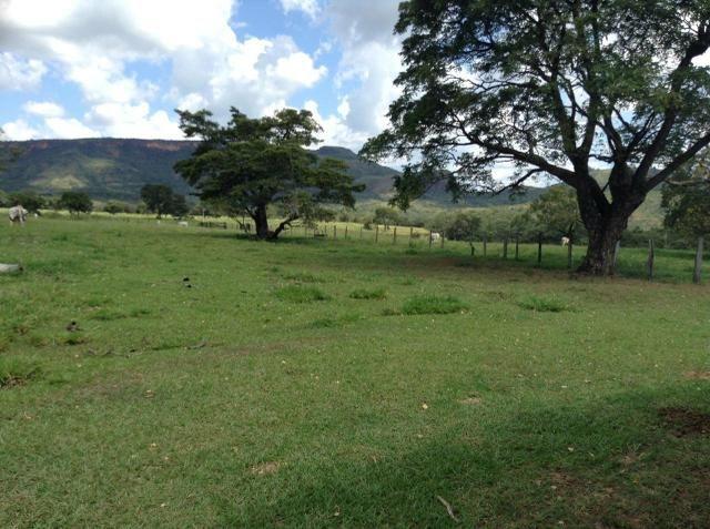 Fazenda 612 hectares em Pedra Preta - Foto 3