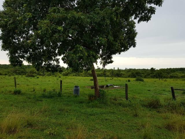 Fazenda c/ 357 alqueires em Porto Esperidião - Foto 12