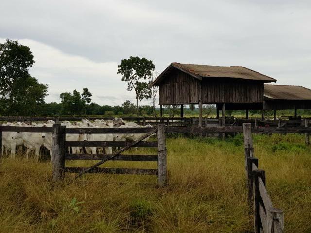 Fazenda c/ 357 alqueires em Porto Esperidião - Foto 5