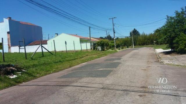 Terreno à venda, 2952 m² por r$ 2.300.000,00 - afonso pena - são josé dos pinhais/pr - Foto 12