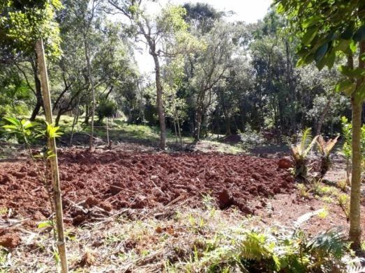Terreno à venda em Zona rural, Osório cod:V01839 - Foto 3