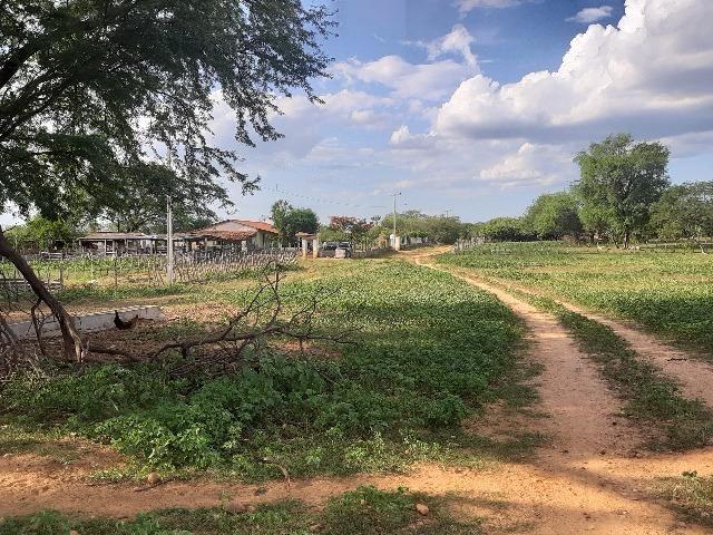 Vendo fazenda ou troco - Foto 12