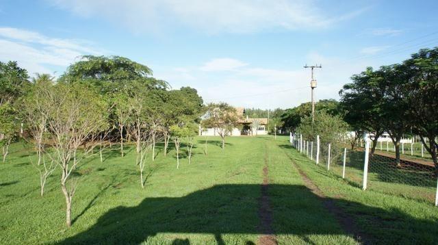 Chacara a Venda - Porto Rico Paraná - Foto 8