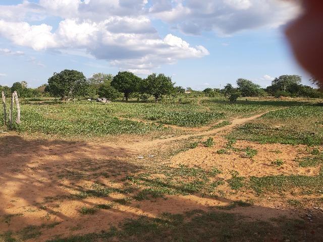 Vendo fazenda ou troco - Foto 16