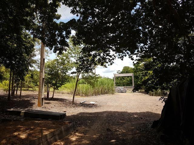 Sitio no Rio Manso - Foto 18