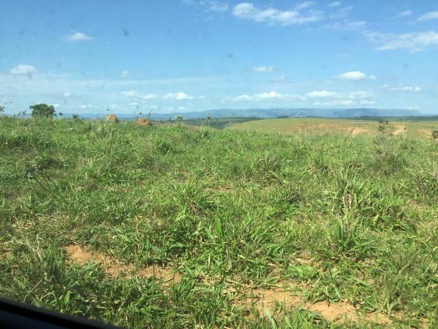 Fazenda em bambui 440 hectares 3.000.000.00 - Foto 10