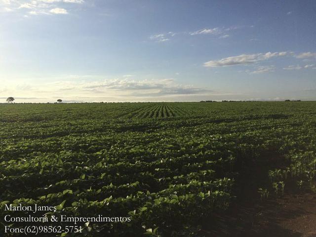 Fazenda em Mundo Novo! - Foto 2