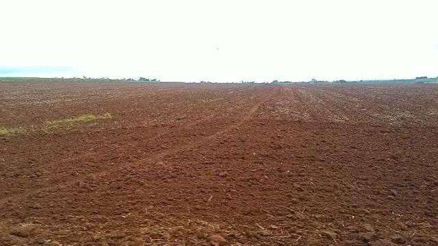 Fazenda  Arrendamento no Ms 900 ha - Foto 9