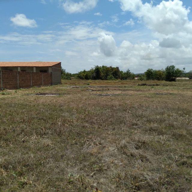 Terreno a venda em Lucena medindo 14,0 x 20,0 metros - Foto 4