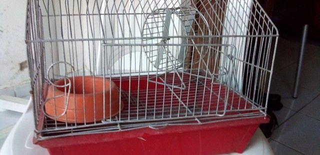 Gaiola De Hamster  - Foto 3