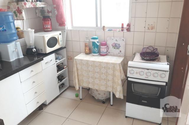 Apartamento à venda com 3 dormitórios em Salgado filho, Belo horizonte cod:249666 - Foto 17