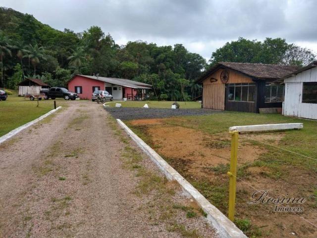 Chácara com 3 dormitórios à venda, 24200 m² por R$ 650.000,00 - Capituva - Morretes/PR - Foto 8