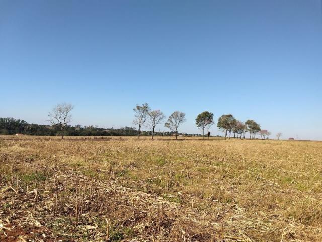 Chácara próxima da cidade de Entre Rios do Oeste PR Troco por casa ou sobrado - Foto 2