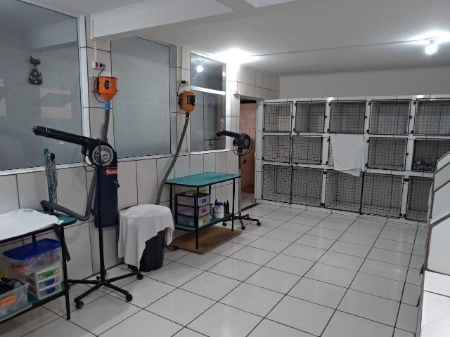 Pet Shop-Vila Guilherme - Foto 2