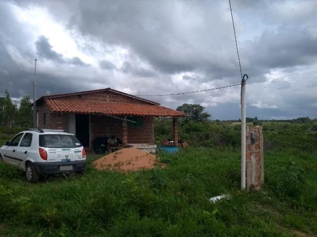 Granja BR 101 1 Hectare Arisco Paú Casa Sede Energia Elétrica Rio Maxaranguape 1km da BR - Foto 11