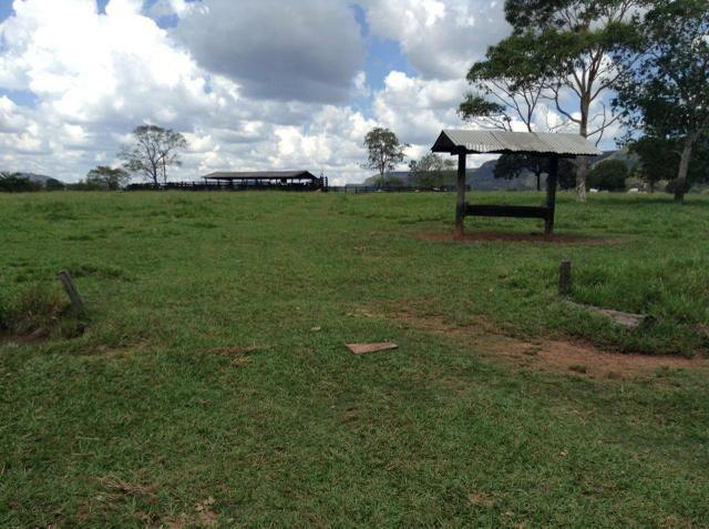 Fazenda 612 hectares em Pedra Preta - Foto 5