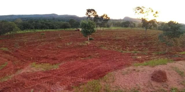 Fazenda em Guiratinga 680Hectares - Foto 15