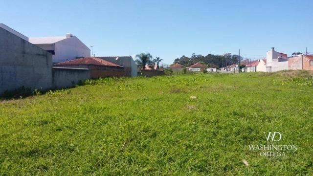 Terreno à venda, 2952 m² por r$ 2.300.000,00 - afonso pena - são josé dos pinhais/pr - Foto 17