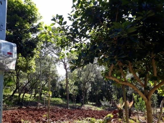Terreno à venda em Zona rural, Osório cod:V01839 - Foto 2