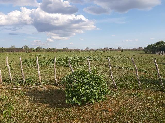 Vendo fazenda ou troco - Foto 17