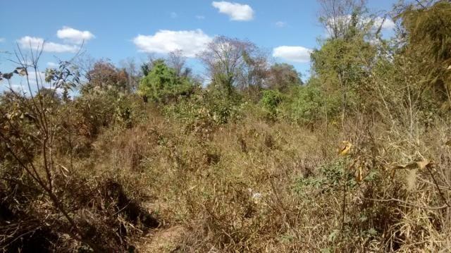 Área, Fazenda Santo Antônio das Lages, Caldas Novas-GO - Foto 3