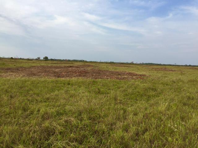 Fazenda 4.983 hectares em Livramento 35 km de Cuiabá - Foto 7