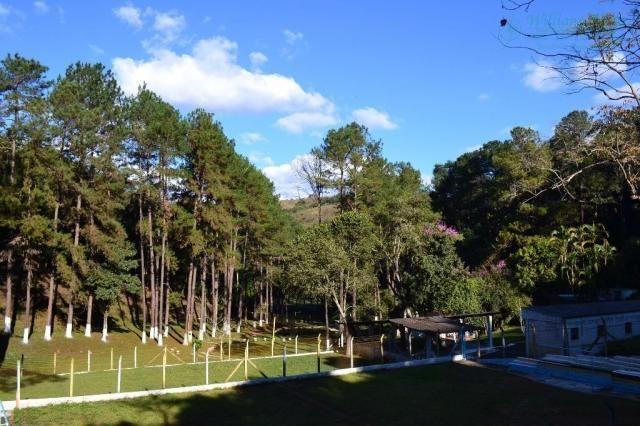 Área à venda, 72.944 m² por r$ 12.000.000 - jardim paraíso - guarulhos/sp - Foto 6