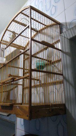 Gaiola de prédio para tiziu - Foto 2