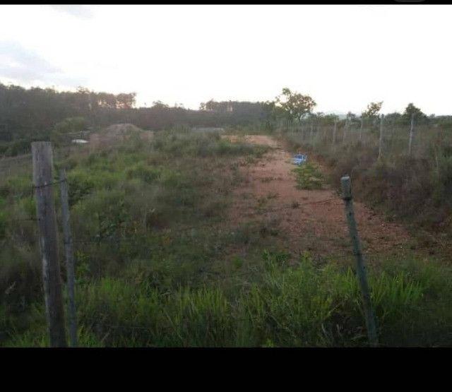 Lindo terreno no Elvas - Foto 2