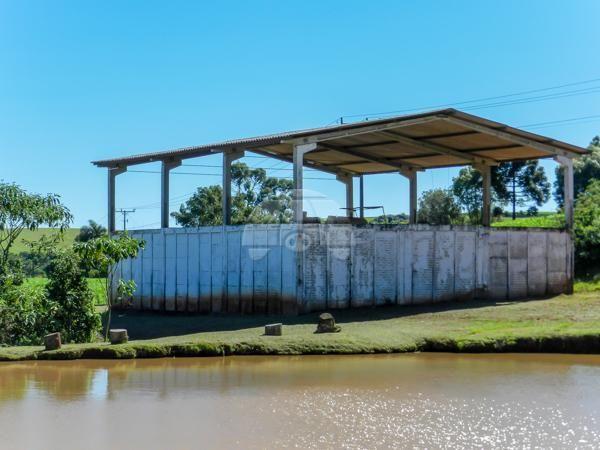 Chácara à venda em Boqueirão, Guarapuava cod:142185 - Foto 14