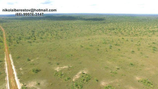 Fazenda 3.000 hectares nordeste mt nikolaiimoveis
