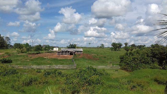 Fazenda no asfalto próxima a Acrelândia e Placido de Castro