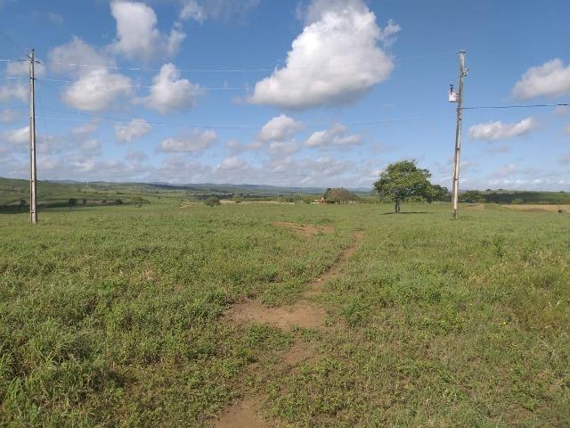 Propriedade de 8 hectares-toda cercada-com 2 casas, a 5 km de Apoti-PE - Foto 10