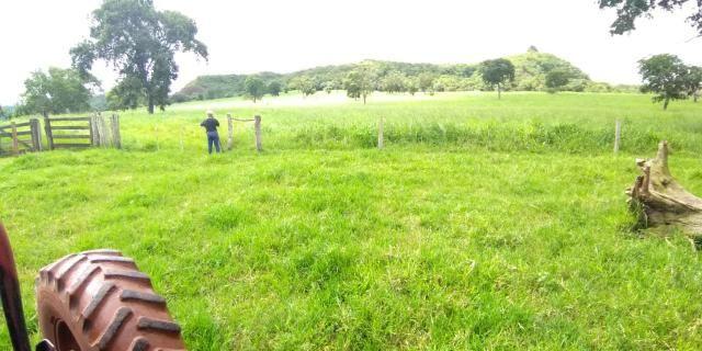 Fazenda em Guiratinga 680Hectares - Foto 20