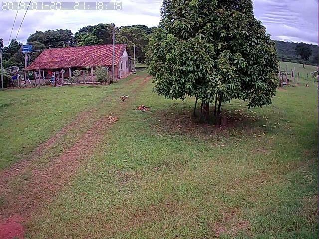 Fazenda em Guiratinga 680Hectares - Foto 6