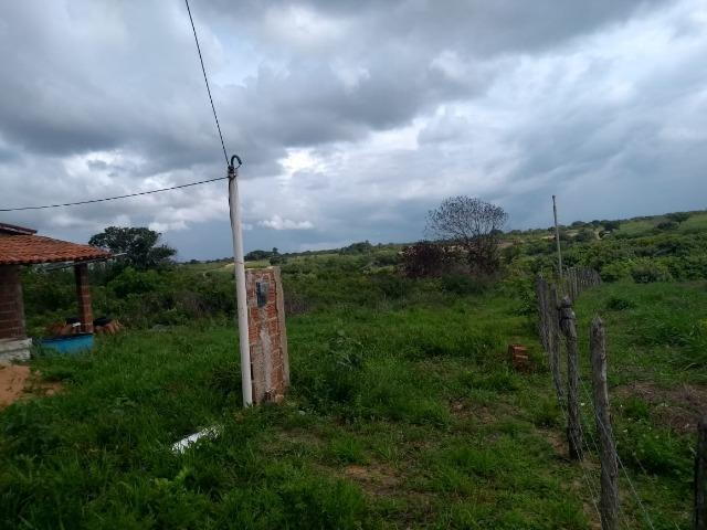 Granja BR 101 1 Hectare Arisco Paú Casa Sede Energia Elétrica Rio Maxaranguape 1km da BR - Foto 4