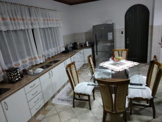 Casa à venda com 4 dormitórios em Mina do mato, Criciúma cod:24946 - Foto 7