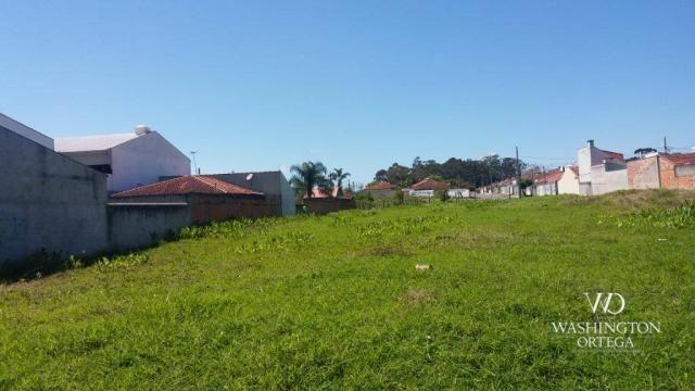 Terreno à venda, 2952 m² por r$ 2.300.000,00 - afonso pena - são josé dos pinhais/pr - Foto 3