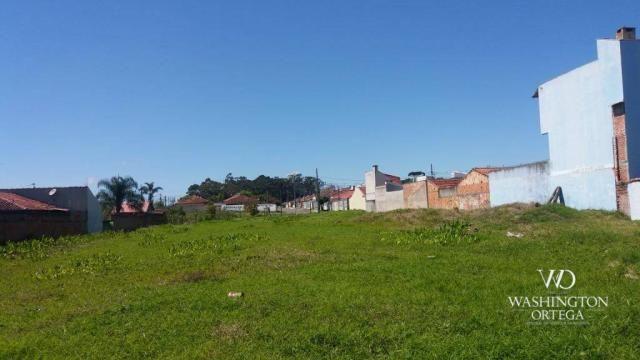 Terreno à venda, 2952 m² por r$ 2.300.000,00 - afonso pena - são josé dos pinhais/pr